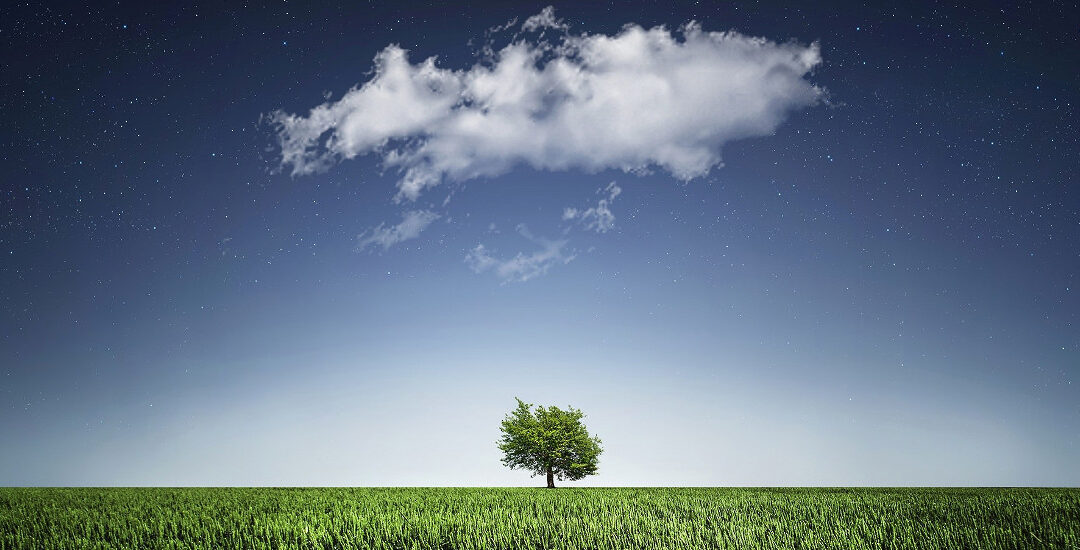ECM in the Life Sciences Market: Bringing the Cloud Discussion Down To Earth